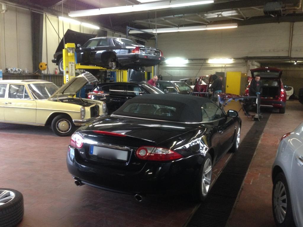 Jaguar Coupé und Cabrio